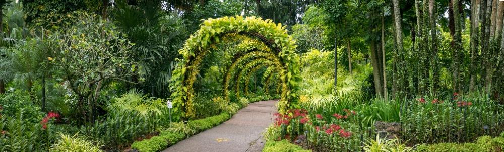 Die schönsten Botanische Gärten in Deutschland