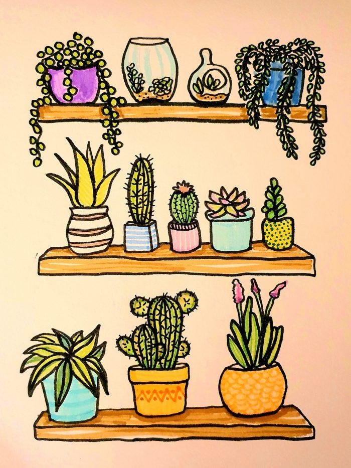 Zeichnung Pflanzen