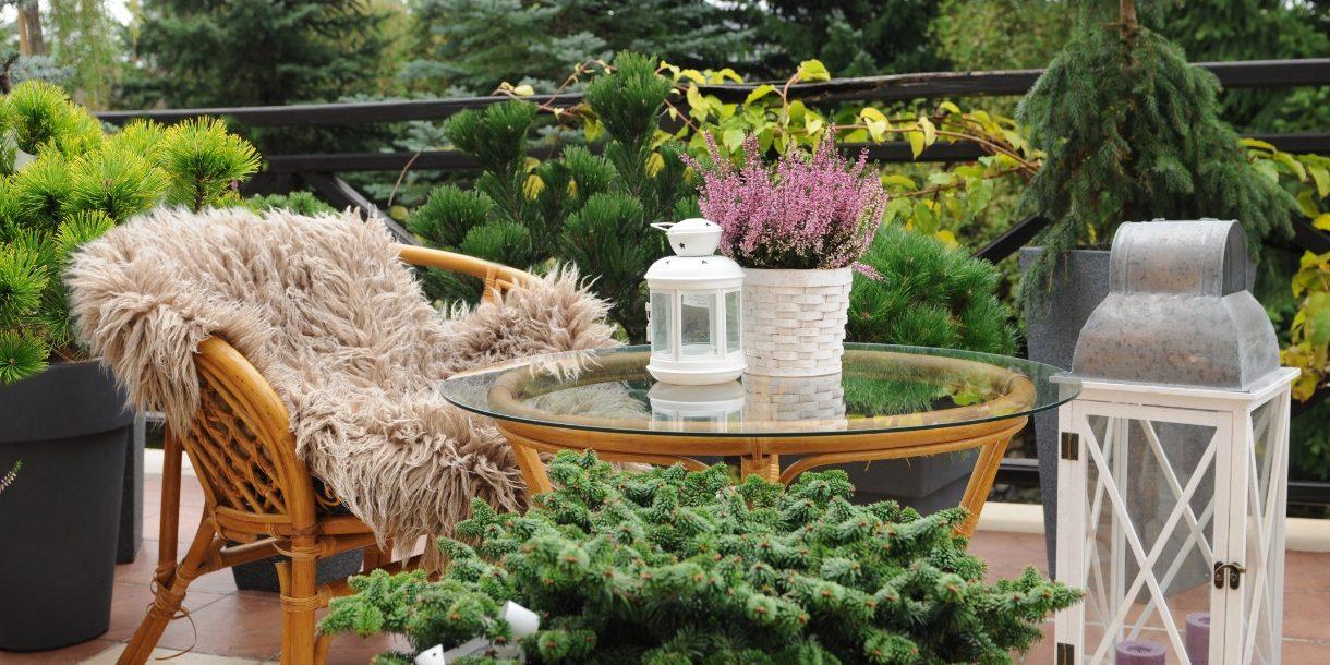 Balkon mit Pflanze im Vordergrund, dahinter Sitzgarnitur, Ausblick auf Wald
